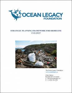 STRATEGIC PLANNING FOR SHORELINE CLEANUP